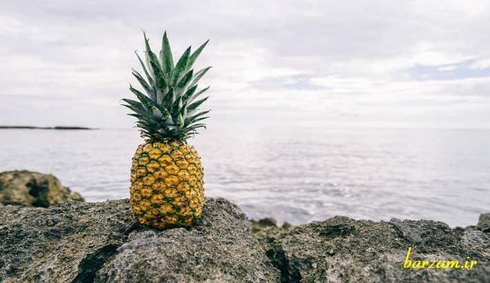 تاثیر آناناس بر سیستم ایمنی