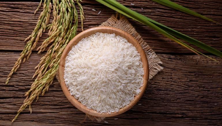 دانه گیاه برنج